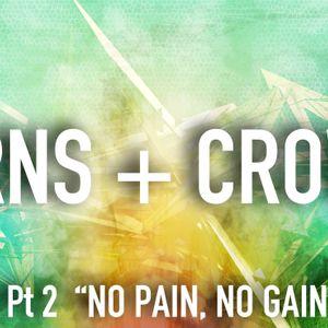"Thorns + Crowns Pt 2: ""Np Pain, No Gain"""