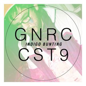 Guest Mix #5: Indigo Bunting