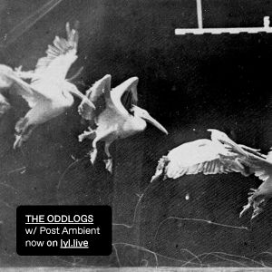 The Oddlogs: Post-Ambient (30.06.17)