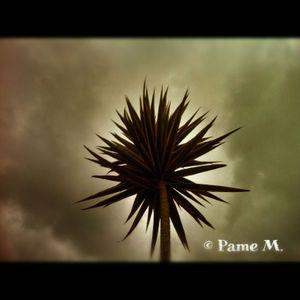 La Casa de la Luna - Episode 034