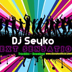 Dj Seyko - NEXT SENSATION 2012