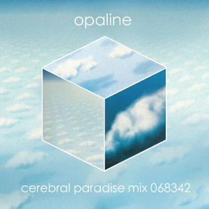Cerebral Paradise Mix 068342 by Opaline