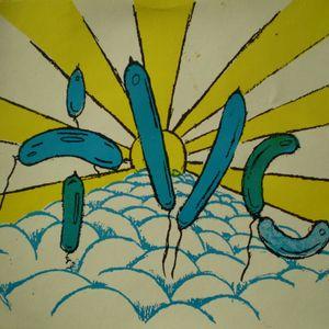 TIMO & JES (t.V.C.) @ Pond Cottage free party,Selling.9th nov.1996.rec.4.B.