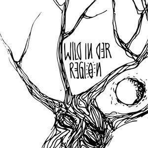Wild in der Region - // PauLe // - Still Techno