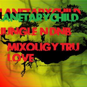 PLANEXTARYCHILD LIVE JUNGLE MIX ON BOOM 808 RADIO .NET ONE LOVE