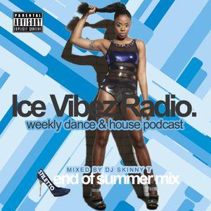 Dj Skinny T - Stiletto Dance n House Mix
