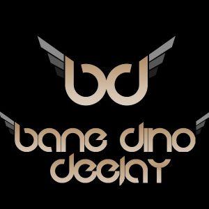 DJ BANE & DJ DINO - IN THE MIX VOL.7 (Jun 2012)