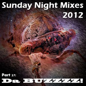 Sunday Night Mixes, 2012: Part 27 - Da BUZZZZ!