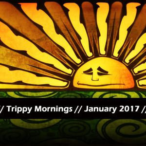 Cheda // Trippy Mornings // January 2017 // MIX001
