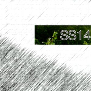 SS:14