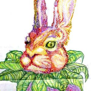 the big Big Hare Show 8 05 April 2017 StrandedFM