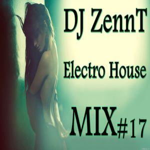 DJ ZennT - Electro House MIX #17