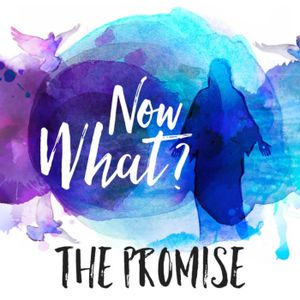 Now What?: The Promise