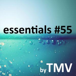 TMV's Essentials - Episode 055 (2010-01-18)