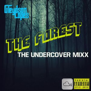The Forest: Undercover Mixx