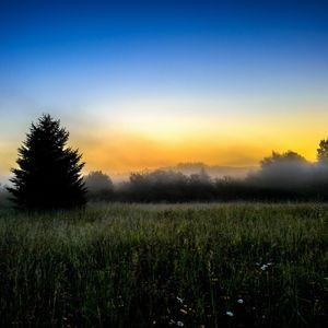 Early Morning Raver