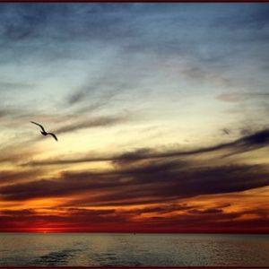 Kalo - Sunrise