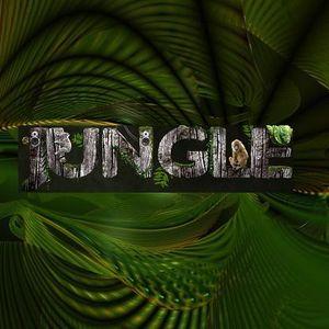 Illusionist Deep In The Jungle - Bassdrive