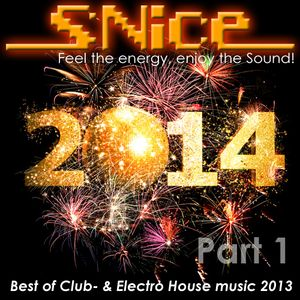 DJ SNice - Best Of Club & Electro House 2013 Part 1