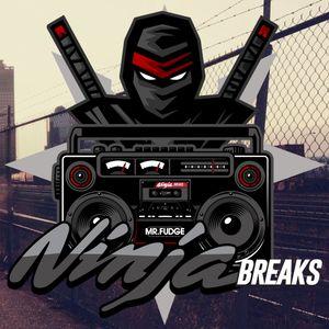 Ninja Breaks