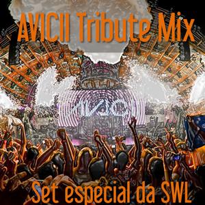 AVICII Tribute Mix (Rio E.Music Festival)