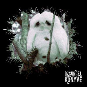 DJ Ren + Mentalien at Dzsungel Konyve 2018.11.13.