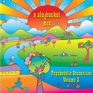 Psychedelic Obscurities Volume 2