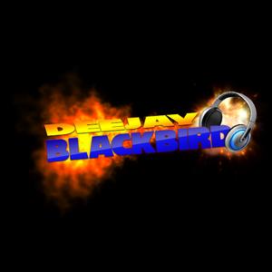 Dj_BlackBird - Rocco & Bass-T Megamix#1