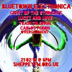 Bluetown Electronica live show 21.02.16