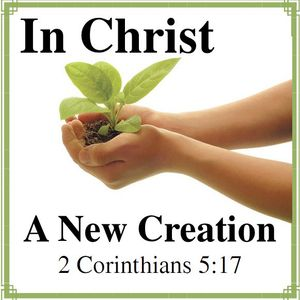 You are New Creation