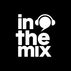 IN THE MIX VOL 13