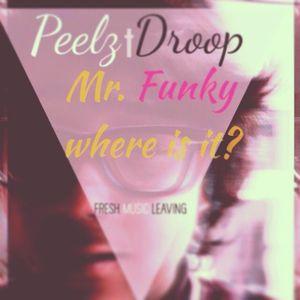 Mr.Funky were is it (FML)