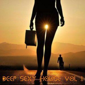 DEEP SEXY HOUSE VOL 1 2016 MIX