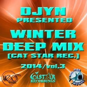 Djyn - Winter Deep Mix 2014 (Cat Star Rec.vol.3)