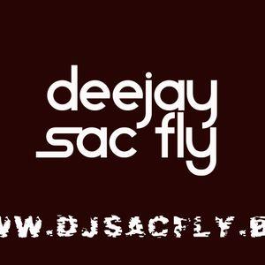 DJ Sac Fly - Dancehall Again