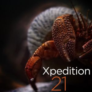Xpedition Mix 21