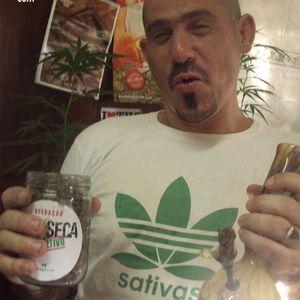 Cadáver Sativa #5 (14-11-12)