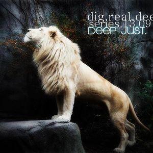 dig.real.deep_series_13.09
