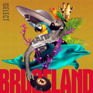 Bruceland #11