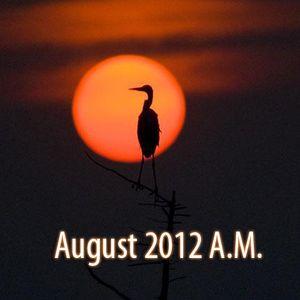 8.18.2012 Tan Horizon Shine A.M.