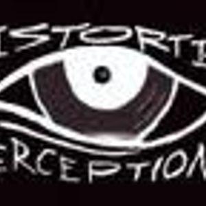 Tsetso Tsvetanov- Distorted Perceptions