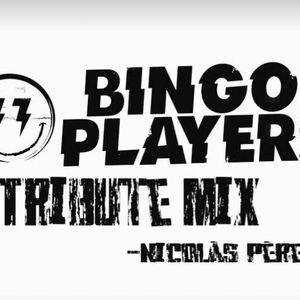 Bingo Players (tribute mix)