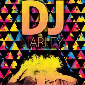 DJ Harley - Jackin Fidget + Electro Mix 4-15-2010