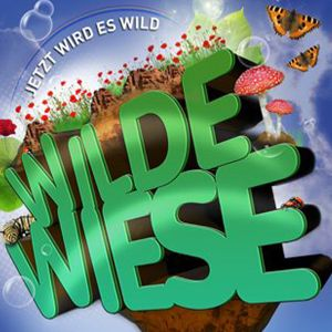 "Frank Savio ""Wilde Wiese 2012"" WarmUp [90min DJ-Set]"