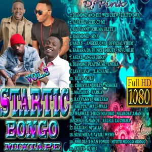 Dj Pink The Baddest - Startic Bongo Mixtape Vol 3 by DJ PINK