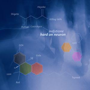 indjstione - hard on neuron