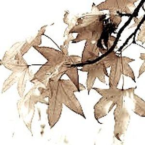 AutumnminimiX2010