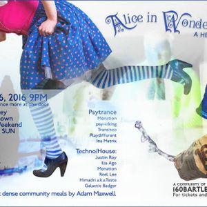 Alice in Wonderland - a hero's journey - Dj Himadri aka teste v1