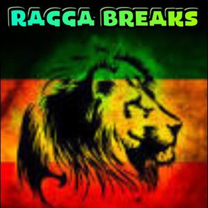 Dj M R C  RAGGA BREAKS