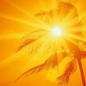 Sunny Side Up Vol.2